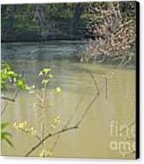 White River Canvas Print