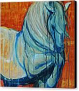 White Stallion Canvas Print by Jani Freimann