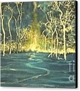 White Trees In The Blue Woods Canvas Print by Stefan Duncan