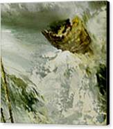 White Water Adventures Canvas Print