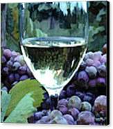 White Wine Reflections Canvas Print