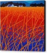 Wicklow Meadow Canvas Print by John  Nolan