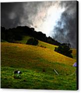 Wilbur The Pig Goes Home - 5d21059 Canvas Print by Wingsdomain Art and Photography