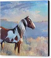 Wild Domain Canvas Print by Gwen Carroll
