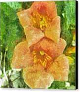 Wild Flowers Canvas Print by Jeff Kolker