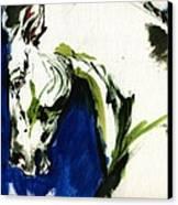 Wild Horse Canvas Print by Angel  Tarantella