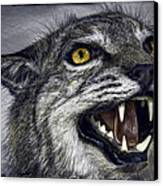 Wildcat Ferocity Canvas Print by Daniel Hagerman