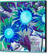Wildflower Canvas Print by Tom Druin