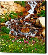 Wildflower Waterfall Canvas Print