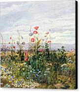 Wildflowers With A View Of Dublin Dunleary Canvas Print