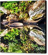 Williams River Reflections Canvas Print by Thomas R Fletcher