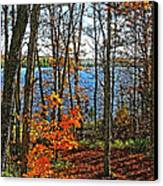 Willow Lake Canvas Print by Bill Morgenstern