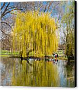 Willow Tree Water Reflection Canvas Print by Matthias Hauser