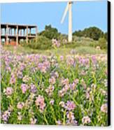 Wind Turbine And Flowers Canvas Print by Gynt