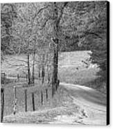 Winding Road In Wilderness Black And White Canvas Print by Sherri Duncan