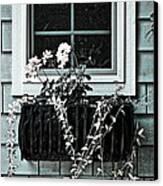 Window Dresser Canvas Print by Bonnie Bruno