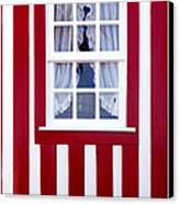 Window On Stripes Canvas Print by Carlos Caetano