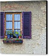Window With Potted Plants Of Rural Tuscany Canvas Print by David Letts