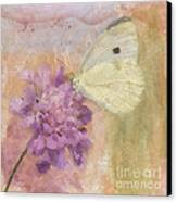 Wings Of Beauty Canvas Print