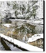 Winter Along Cranberry River Canvas Print by Thomas R Fletcher