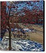 Winter Berries Canvas Print by Baywest Imaging