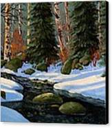 Winter Brook Canvas Print