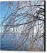 Winter Chill Canvas Print by Margaret McDermott