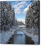 Winter Creek Canvas Print by Fran Riley