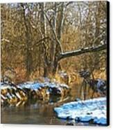 Winter Creek Canvas Print by Joyce Kimble Smith