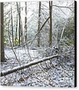 Winter Fallen Tree Canvas Print by Thomas R Fletcher