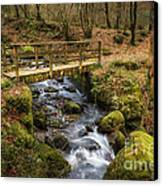 Winter Footbridge Canvas Print