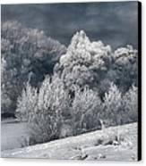 Winter - IIi Canvas Print by Akos Kozari