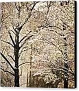 Winter In St. Louis Canvas Print by Marty Koch