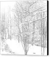 Winter Of '14 Canvas Print