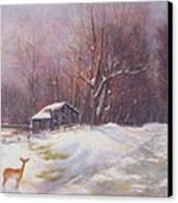 Winter Palette Canvas Print by Howard Scherer