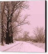 Winter Pink Canvas Print by Carol Groenen