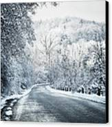 Winter Road In Forest Canvas Print