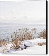 Winter Shore Of Lake Ontario Canvas Print