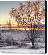 Winter Sunset Canvas Print by Don Powers