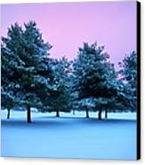 Winter Trees Canvas Print by Brian Jannsen