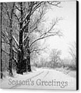 Winter White Season's Greetings Canvas Print by Carol Groenen