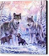 Winter Wolf Family  Canvas Print