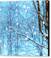 Winter Wonderland Canvas Print by Brenda Schwartz
