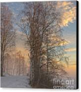 Winterday Canvas Print by Sylvia  Niklasson