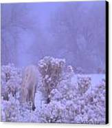 Winter's Blanket Of Snow  Canvas Print by Jeanne  Bencich-Nations