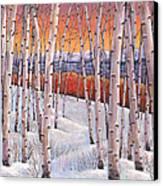 Winter's Dream Canvas Print