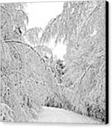 Wintry Road Canvas Print by Conny Sjostrom