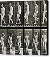 Woman Descending Steps Canvas Print by Eadweard Muybridge