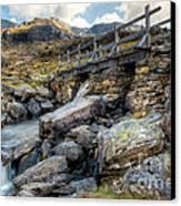 Wooden Bridge Canvas Print by Adrian Evans