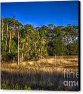 Woodland And Marsh Canvas Print by Marvin Spates